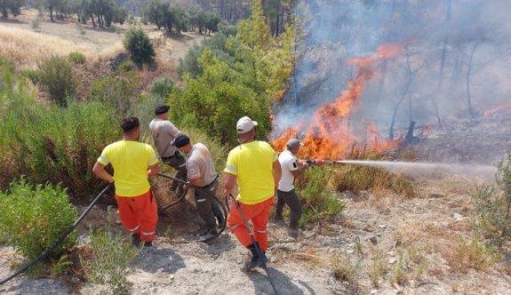 Orman Dairesi ve Sivil Savunma ekipleri yangınlara müdahale ediyor