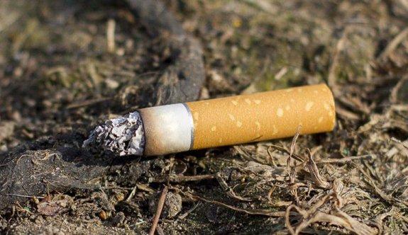 Sigara izmaritleri en önemli yangın sebebi