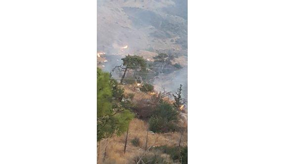 Alevkayası'nda yine yangın
