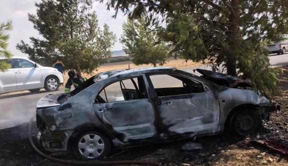 Yoldan çıkarak ağaca çarptı: 3 yaralı