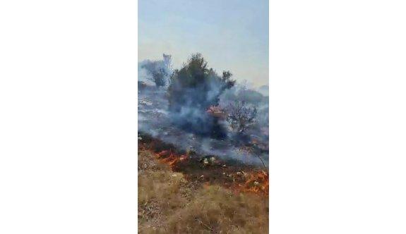 İskele'deki çöplük alanda başlayan yangın korkuttu