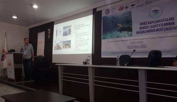 SPOT, Antalya'da deniz kaplumbağları konusunda sunum yaptı
