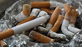 """""""Sigara, çevre kirliliğinin en büyük nedeni"""""""