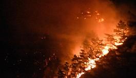 Muğla'da 350 Hektarlık Alanı Küle Çeviren Büyük Orman Yangını