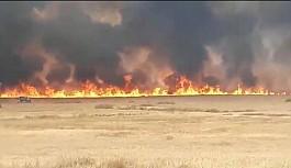 Alayköy'deki ara bölgede 1 km'lik alan yandı