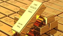 Güney'in 14 ton altın rezervi var