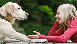 Bizi Anlamadıklarını Bilsek Bile Hayvanlarla...