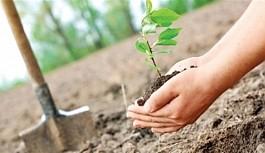 Ormancılık Günü için Tarım Bakanlığından...