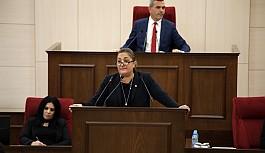 Meclis'te vatan hainliği tartışması