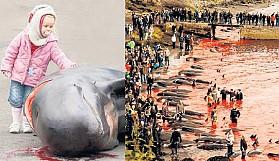 Balina Katliamı