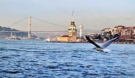 Şahane İstanbul'u anlatan şahane kitaplar