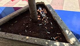 Çiçek saksısı sigara söndürme yeri mi?