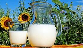 Laktozsuz Süt Hakkında Bilmeniz Gerekenler