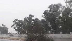 Şiddetli fırtına ve yıldırım ağaçları ana yola sürükledi