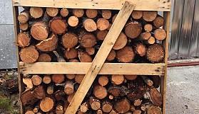 Ağaçlar şöminelere kurban ediliyor