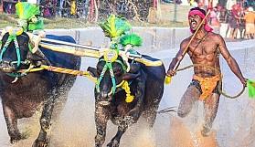 Hint manda yarışcısının rekoru Usain Bolt ile kıyaslanıyor