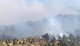Güney'de büyük yangın