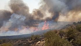 Ağırdağ bölgesindeki yangında 30 dönümlük ormanlık alan kül oldu