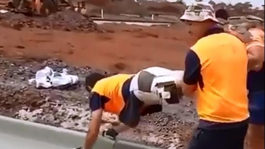 İşini Severek Yapan Eğlenceli İşçiler